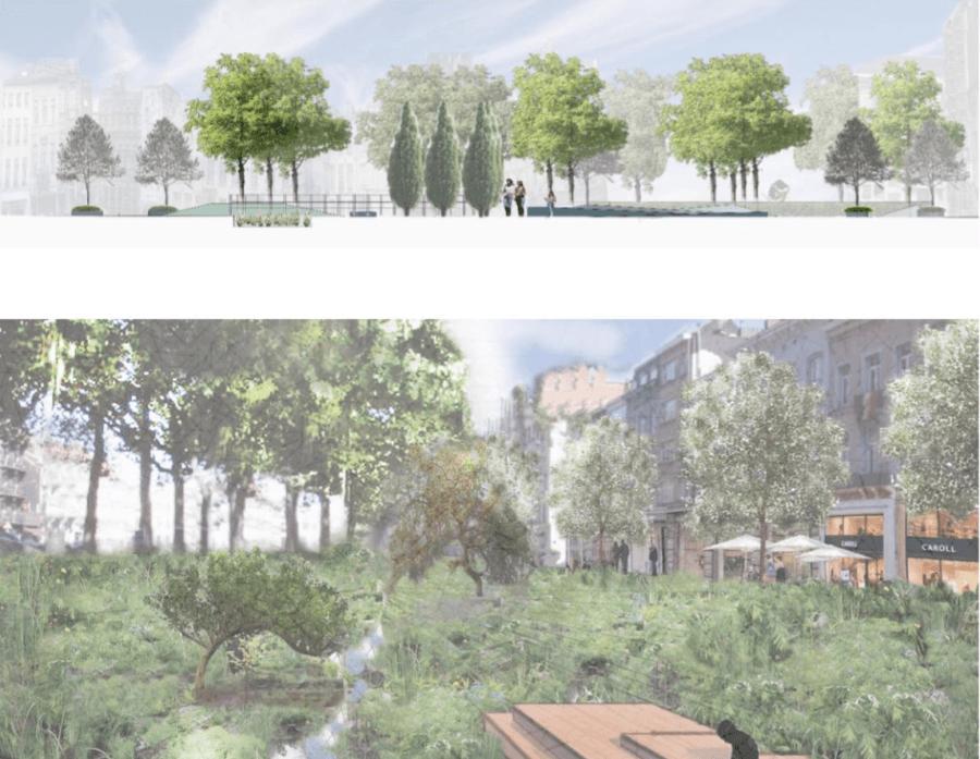 Intégration paysagère de projets immobiliers | Geneviève Errembault, landscpae Designer à Bruxelles et en Wallonie