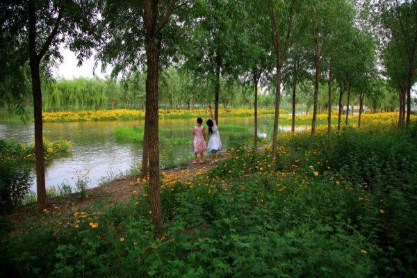 Kongjian Yu - Architecte de la résilience paysagère